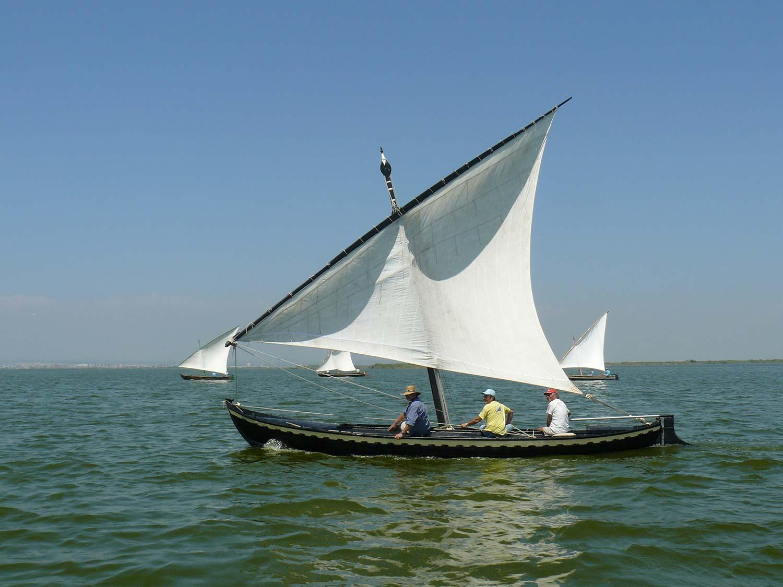 Barca vela llatina albufera