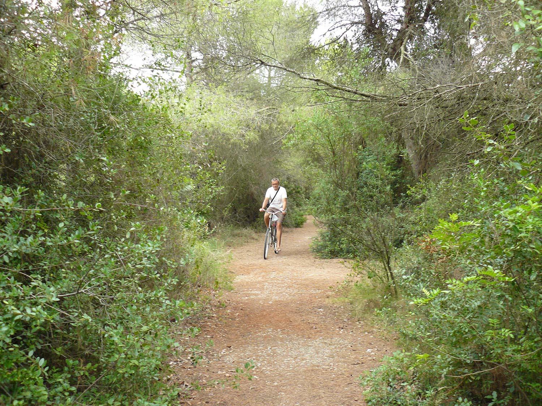 Devesa Albufera en bici