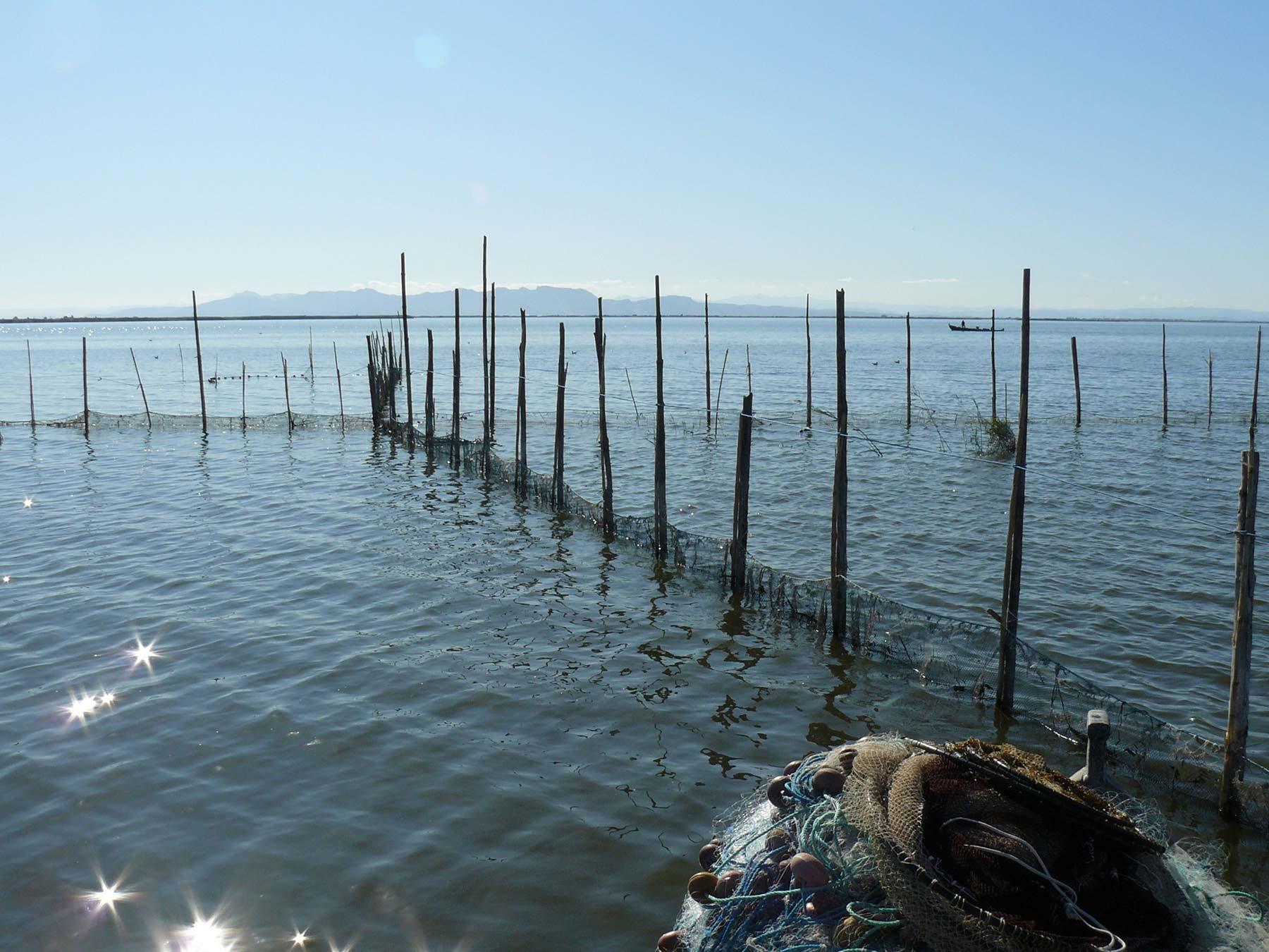 Pesca Albufera Calada Llebeig