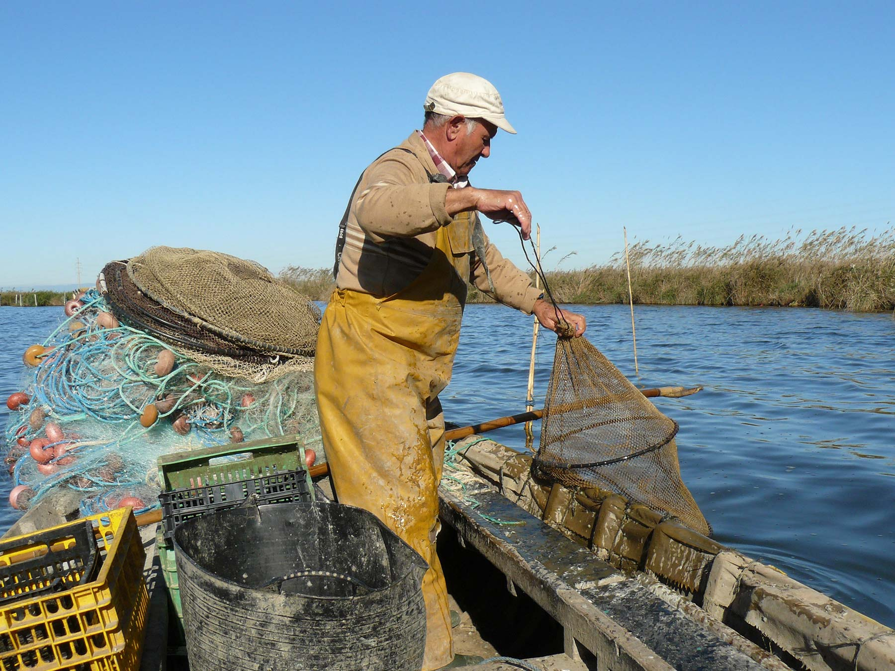 Pesca Albufera Mornell Vicent