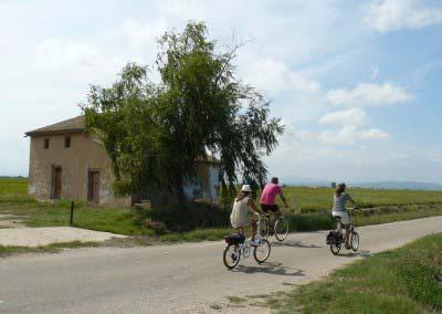 Volta en bici a l'Albufera