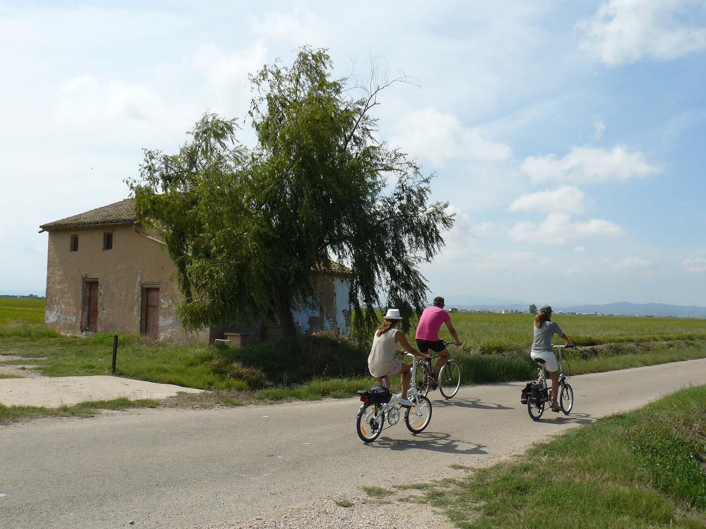 marjal albufera bicicleta